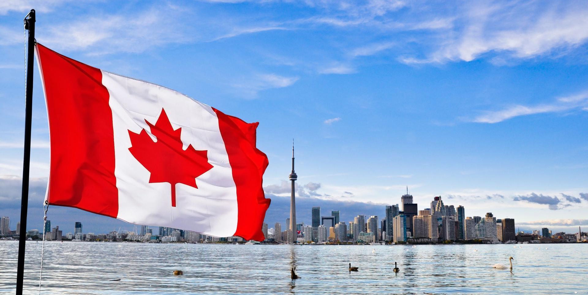 Кем можно работать иностранцу в канаде