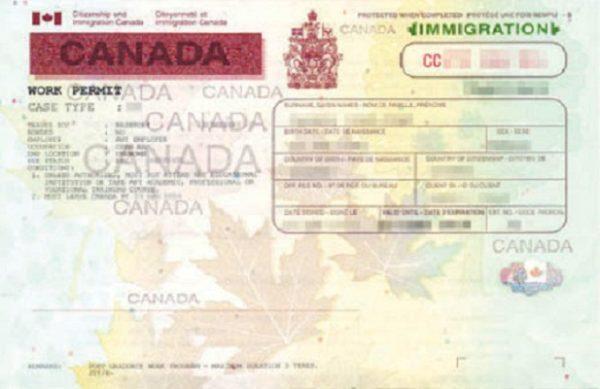 Образец разрешения на работу в Канаде