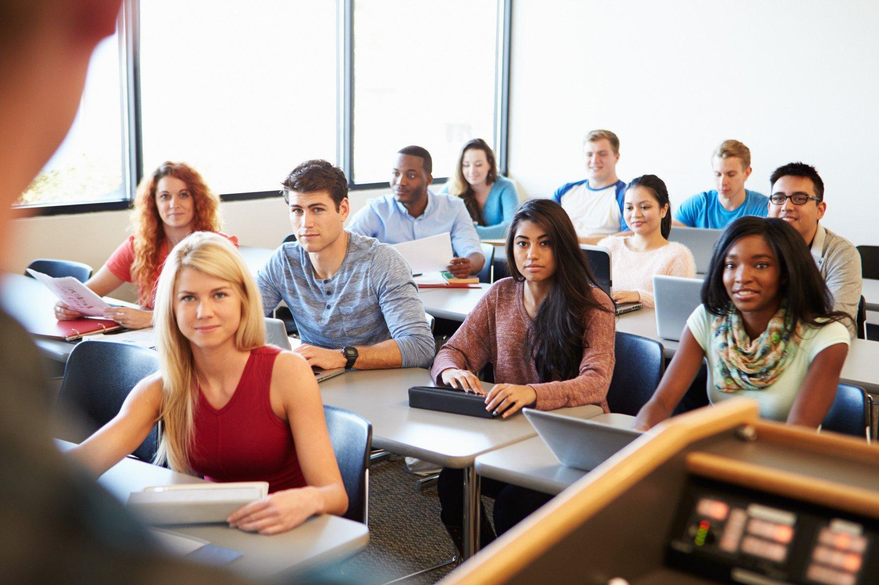 Возможности для обучения в Новой Зеландии: от школ до университетов