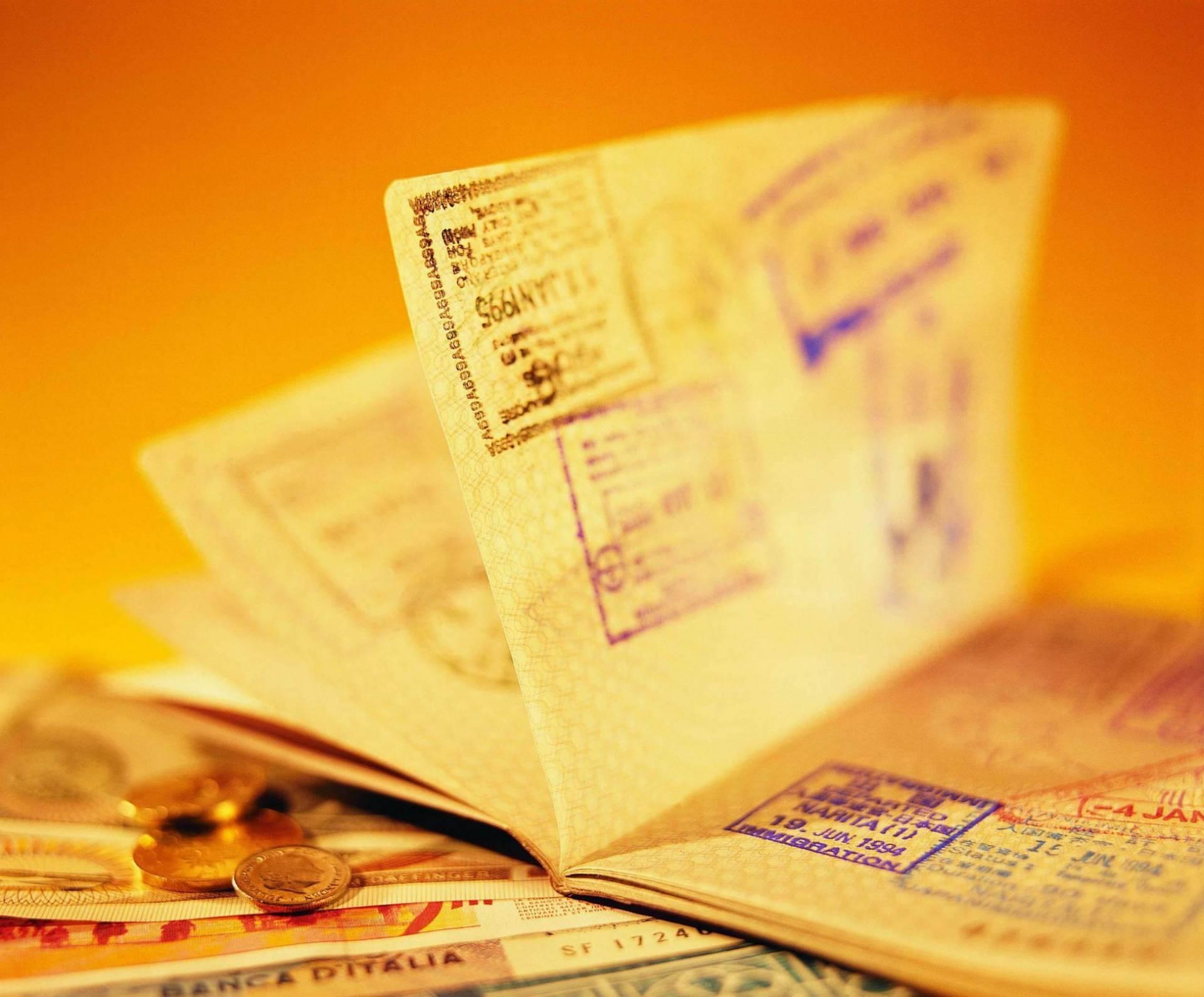 Долгосрочная виза (виза D) в Болгарию — особенности получения и статус
