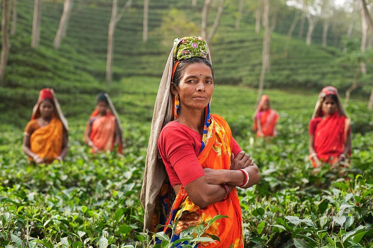 Работа для девушек из индии работа вахтой с омска девушкам