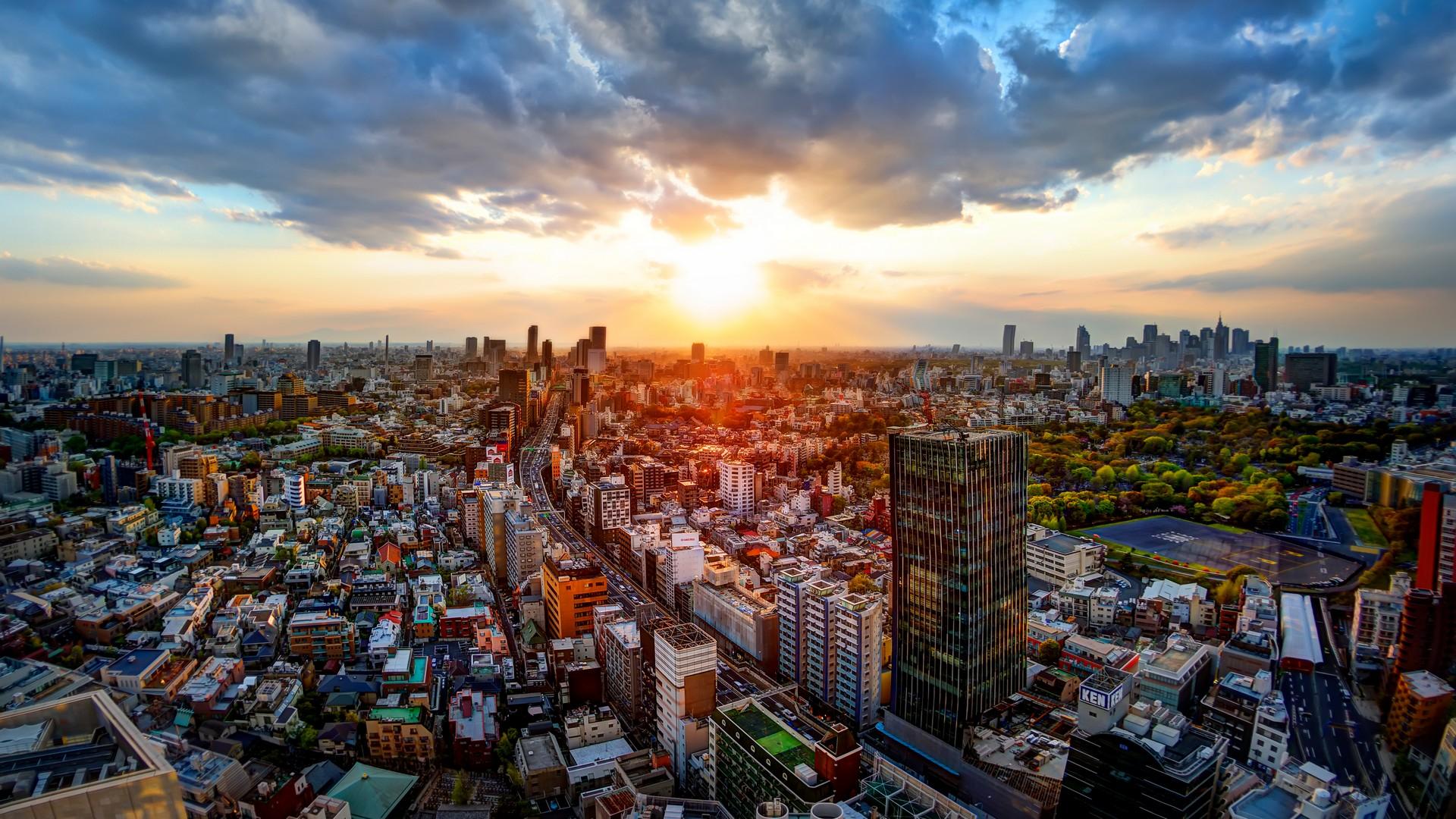 Всё о жизни русских иммигрантов в Японии: от адаптации до отношения местного населения