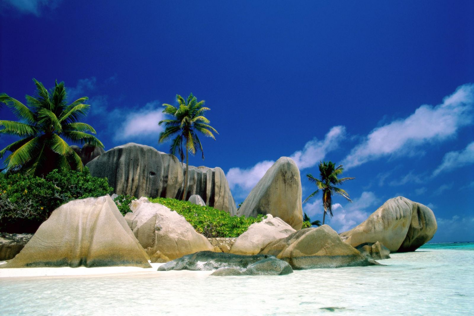 Особенности самостоятельного оформления визы для поездки в Шри-Ланку