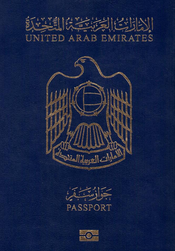 Как надо подать документы в консульство для получение гражданство рф