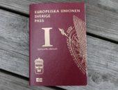 Svenskt medborgarskap