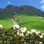 Гора в Абхазии