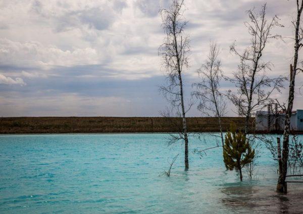 Деревья в голубом озере
