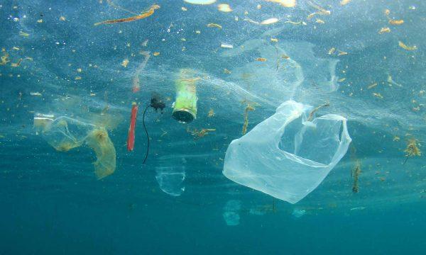 Пластиковый мусор в воде