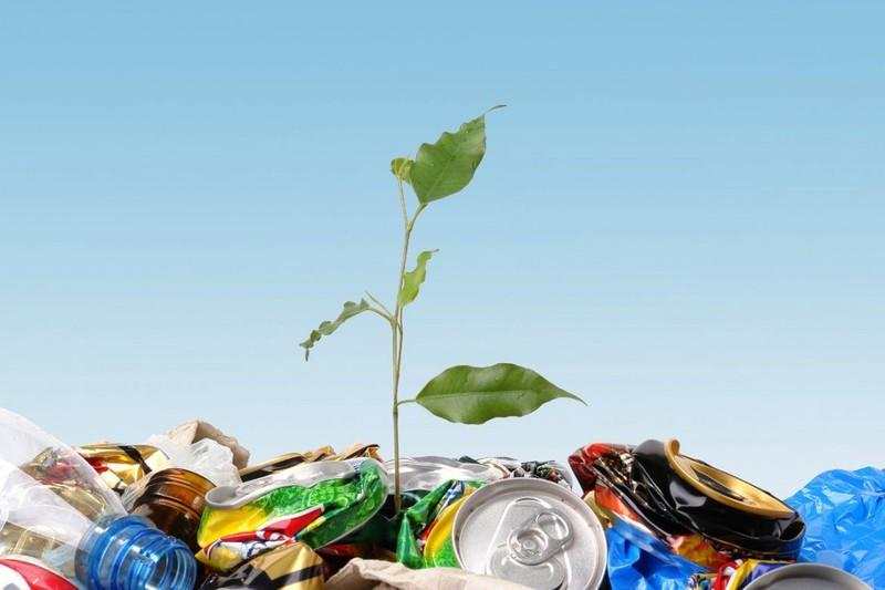 10 вредных для экологии вещей, от которых можно отказаться